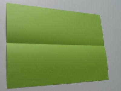 Faltanleitung Flugzeug grün 1