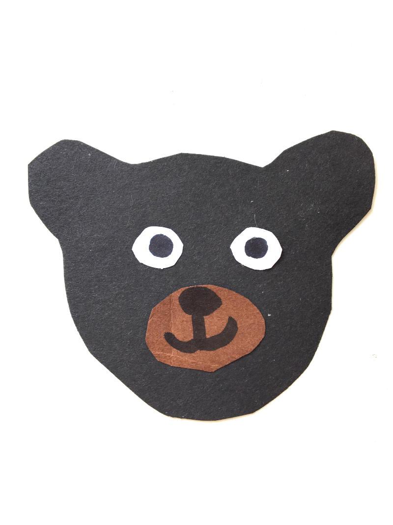 Kopf des Würfelbären